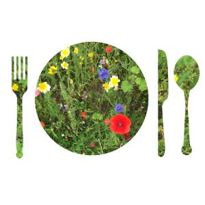 Edible_flowers_plate